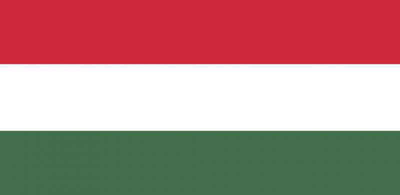 Maďarská spoločnosť