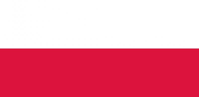 Poľská spoločnosť